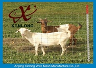 चीन Corrosion Resistance Welded Wire Livestock Panels With ISO9001 / 2008 Certificate फैक्टरी
